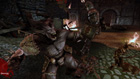 Dragon Age: Origins - Chroniken der Dunklen Brut